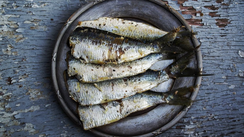 Omega 3 – Iss Dich gesund mit Gutem aus dem Meer